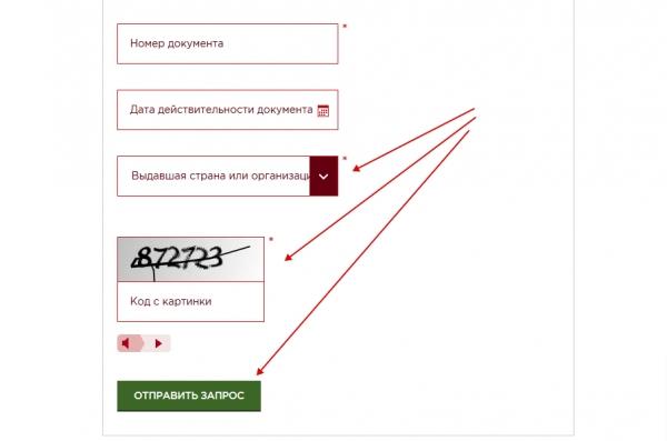 ФМС. Проверка паспорта гражданина СНГ. Ввод имени и фамилии. Отправить запрос на проверку паспорта.