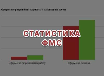 Статистика ФМС по миграционной ситуации в России.